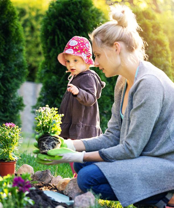 Creez et concevez votre plan de jardin